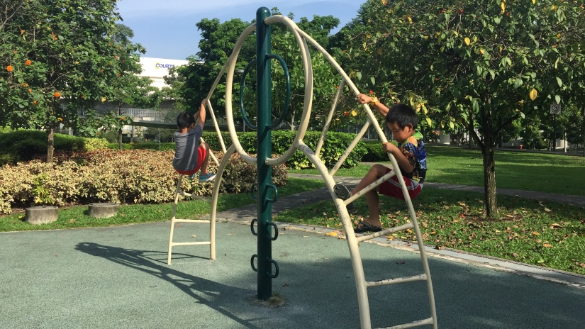 Jurong Central Park – A Gem in the West!